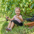Little girl is eating grapes outdoors — Stock Photo