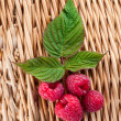 Red ripe raspberries — Stock Photo
