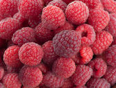 Sweet red raspberries close up — Stock Photo