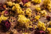 Dry flowers petals — Stock Photo