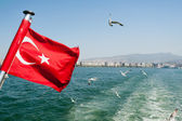 Turkey flag waving with Seagulls — Stock Photo