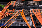 Fiber optical connections with servers — Stock Photo