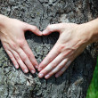 Heart from hands — Stock Photo