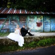 Wedding outdoor portraits — Stock Photo