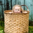 Royalty-Free Stock Photo: Little girl in the basket