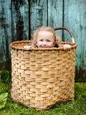 Little girl in the basket — Stock Photo