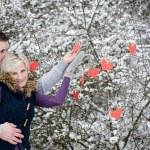 Couple in winter — Stock Photo #27617879