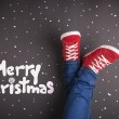 Christmas concept — Stock Photo #33616089