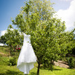 Bridal dress — Stock Photo