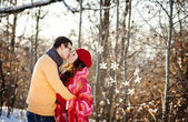 Vintern par — Stockfoto