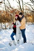 Kilka zimowych — Zdjęcie stockowe