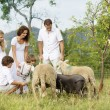 Family feeding animal on the farm — Stock Photo
