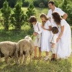 Family feeding animal on the farm — Stock Photo #36987925