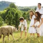 Family feeding animal on the farm — Stock Photo #36988545