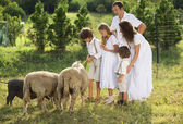 Family feeding animal on the farm — ストック写真
