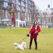 Winter portrait of pregnant woman walking dogs — Stock Photo #40181885
