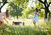 Two sisters with dog — Stockfoto