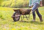 Farmer pushing wheelbarrow — Stock Photo
