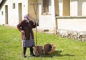 Mujer con rastrillo y cestas — Foto de Stock