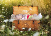 Baby girl lying down in suitcase — Stockfoto