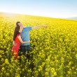 Couple hugging in field — Stock Photo #46524661