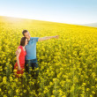 Couple hugging in field — Stock Photo #46524673