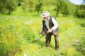 Farmer using scythe to mow grass — Stock Photo