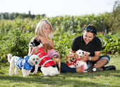 Couple with their dogs — Stock Photo
