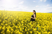 Pregnant woman in colza field — Stock Photo