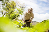Farmer with a hoe weeding — Stock Photo