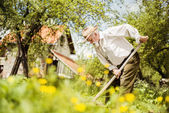 Farmer with a hoe weeding — ストック写真