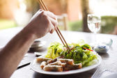 Spring rolls with salad — Stock Photo