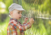 Baby boy looking through fence — Stock Photo