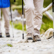 Legs of couple hiking at mountains — Stock Photo #49713431