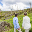 Senior couple at destroyed forest — Stock Photo #49713471