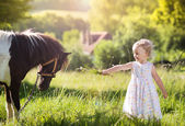 Girl feeding pony — Stock Photo