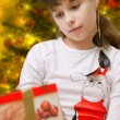 Girl in Christmas — Stock Photo #15535811