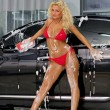 Beautiful woman in red swimsuit washing a car - Stock Photo