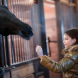 Girl stroking horse — Stockfoto #18227961