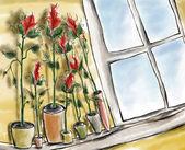 Window with flowers — Stock Photo