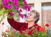 Old lady with her flower — Stock Photo