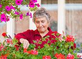 Vecchia signora con fiori — Foto Stock