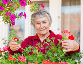 Old lady with flowers — Stock Photo