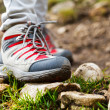 Hiking boots — Stock Photo #40630153