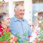 Happy elderly couple — Stock Photo #43036697