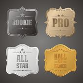 Rookie, pro, all star, hall of famer badge — Stock Vector