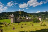 Sucevita Monastery in summer — Stock Photo