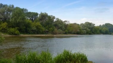 Flusslandschaft — Stockvideo