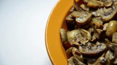 Fresh mushroom — Stock Video