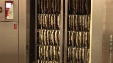 Fish processing plant — Stock Video